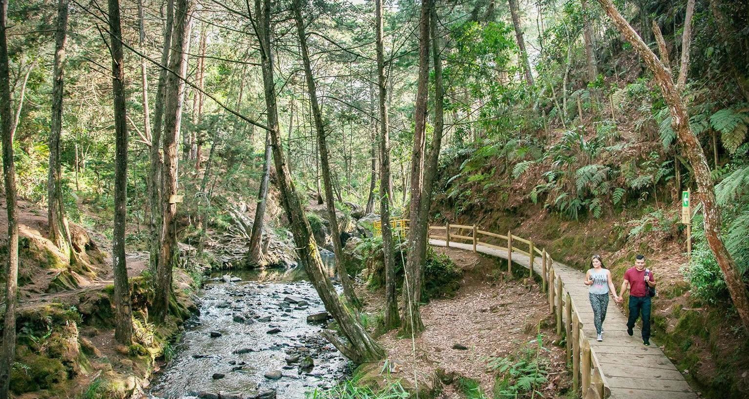 Parque Arví, finalista en la categoría