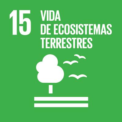 ODS 15 - Vida de ecosistemasterrestres