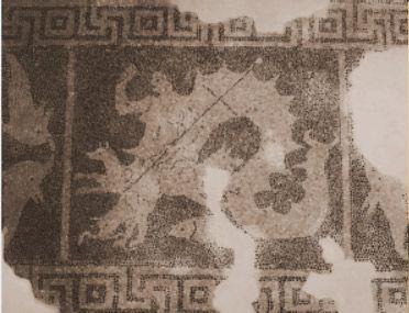 Mosaico de Escila