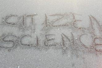 Citizen Science written in sand