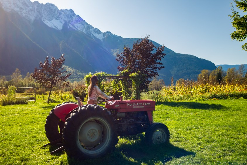 North Arm Farm in Pemberton, British Columbia, with Mount Currie in the background