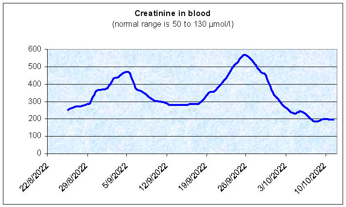 daily creatinine levels
