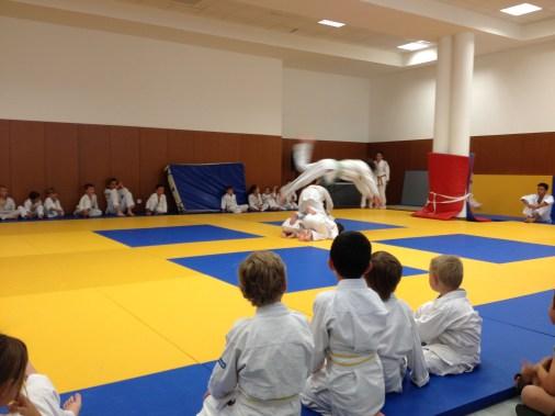 judo ACL 7