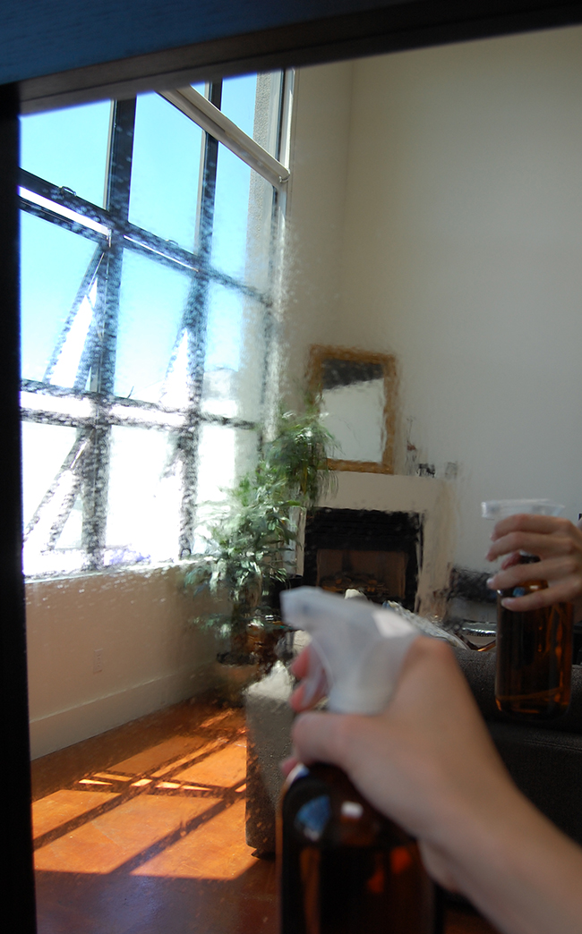 DIY Glass and Mirror Cleaner