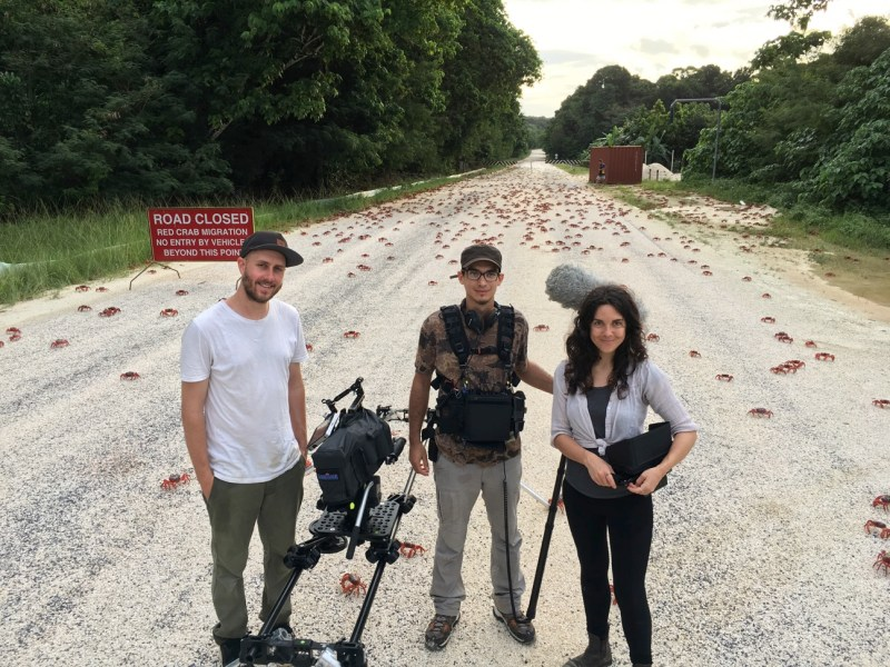 Cinematographer Michael Latham, Sound Recordist Leo Dolgan and Director Gabrielle Brady filming Island of the Hungry Ghosts' during the annual Red Crab Migration on Christmas Island - PHOTO Supplied