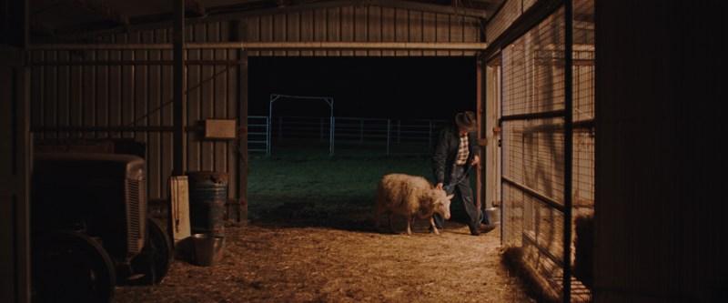 1. A scene from short film 'Shepherd's Pie' - DOP Hossein Khodabandehloo