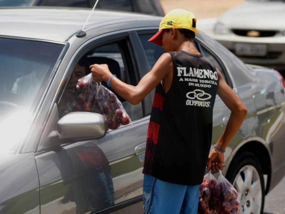 Trabalho infantil: quase 1 milhão de menores trabalham em situação ilegal no Brasil, aponta IBGE