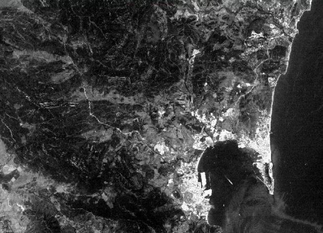 Imagen de la banda 1, en blanco y negro.