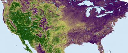 AVHRR NDVI Composite - Imagen cortesía de NOAA.