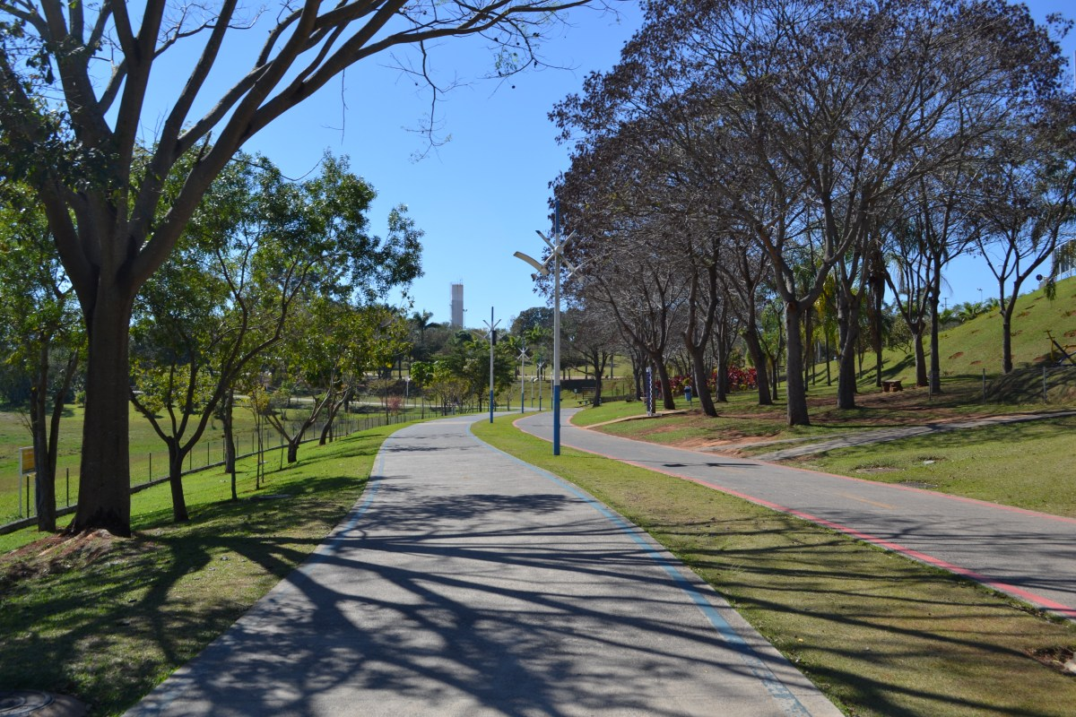 Dia da Árvore: Confira a programação especial no Parque da Cidade