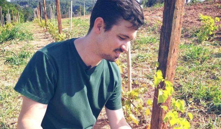 encontro de viticultura