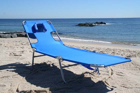 2. Ostrich Lounge Chaise