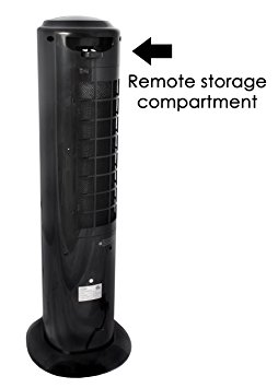 3. NewAir AF-310 Indoor/Outdoor Portable Evaporative Air Cooler