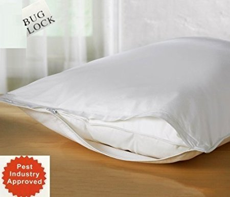 3. BED Bugs Pillow Protector