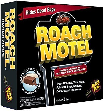 9. Roach Motel Insect Trap