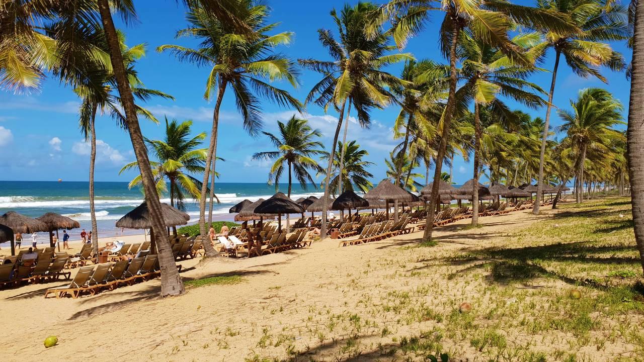 Palladium Week - Bahia