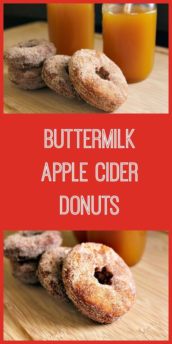 A recipe for fresh cinnamon and sugar dusted buttermilk apple cider donuts to celebrate the best of Autumn.