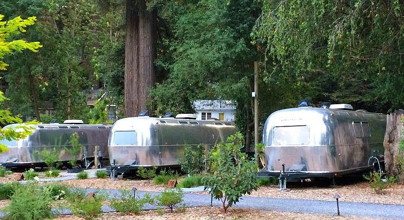 Luxury Glamping in AutoCamp Russian River15