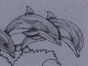 Bottlenosed Dolphins Bookmark