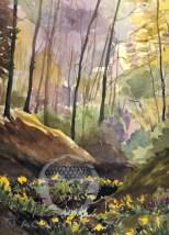 Spring Woods Notecard
