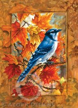 Blue Jay Notecard