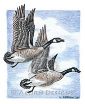Canada Geese Lokta Card