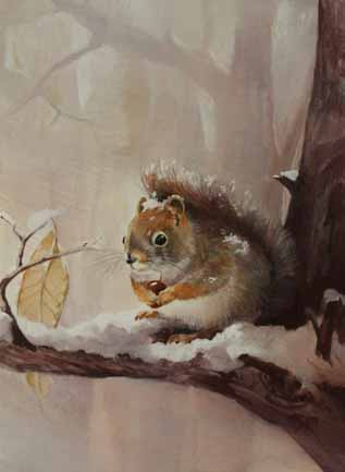 Grey Squirrel Notecard