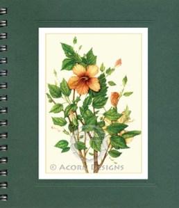 Hibiscus  Notecard