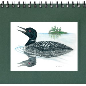 Common Loon Notecard