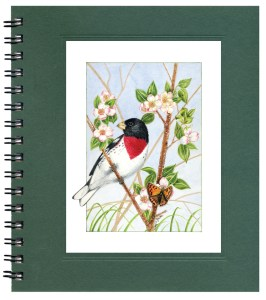 Rose-breasted Grosbeak Notecard