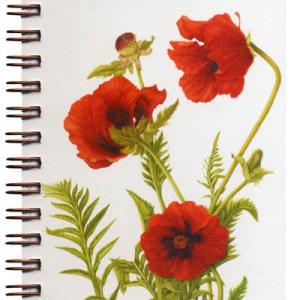 Cover image - Oriental Poppies Mini Journal