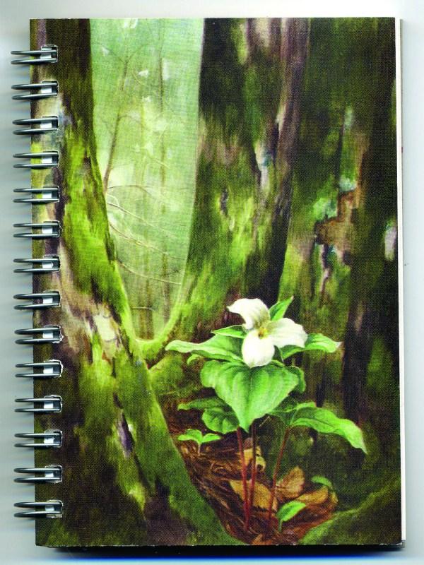 Cover image - Trillium Mini Journal