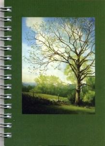 Cover image - American Chestnut Mini Journal
