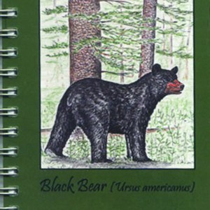 Cover image - Black Bear Mini Journal