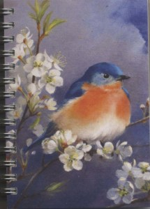Cover image - Eastern Bluebird Mini Journal