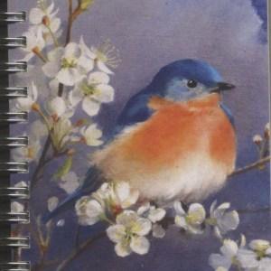 Cover image - Eastern Bluebird Mini Journal