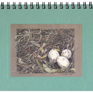 Meadowlark Nest Notecard