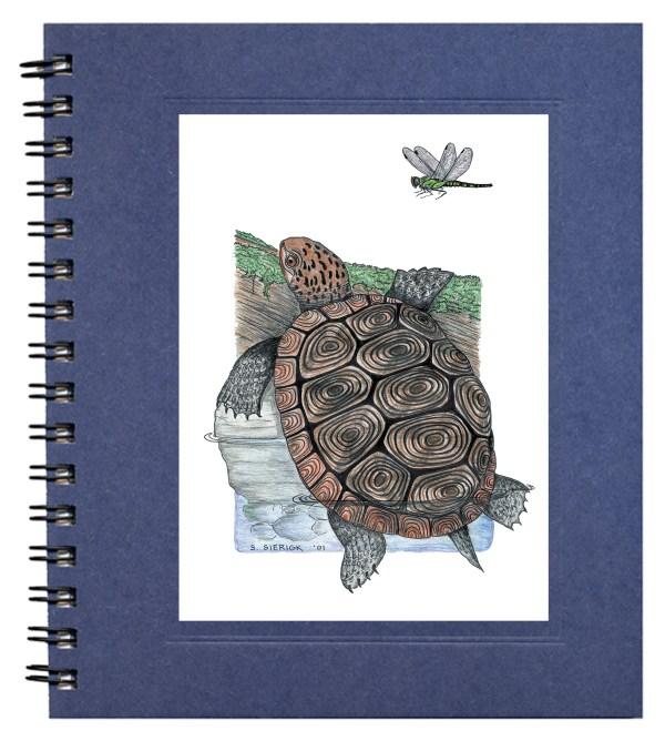 Diamondback Terrapin Journal