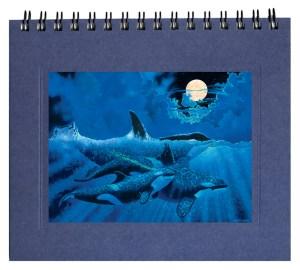 Orcas Notecard
