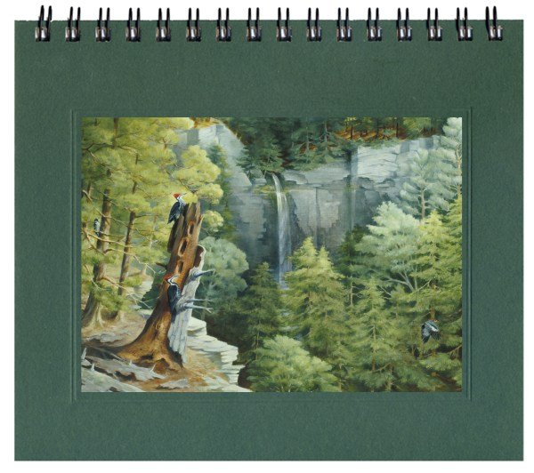 Wild Waterfall Notecard