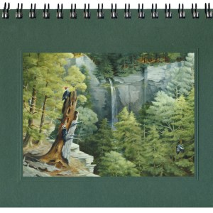 Wild Waterfall Notecard