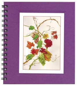 Grapes Notecard