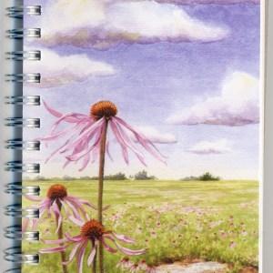 Cover image - Prairies Mini Journal