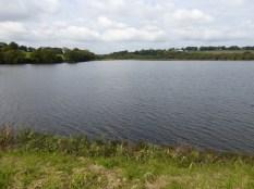 Lower Tamar Lake