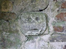 Whitstone: St Anne's well ancient figure