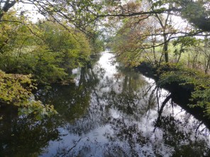 River Ottery