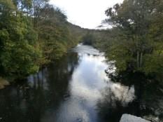 The Tamar at Greystone bridge