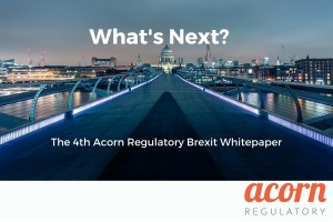 Brexit Whitepaper No. 4 – What's Next? – Download It Here