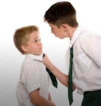 causas del bullying