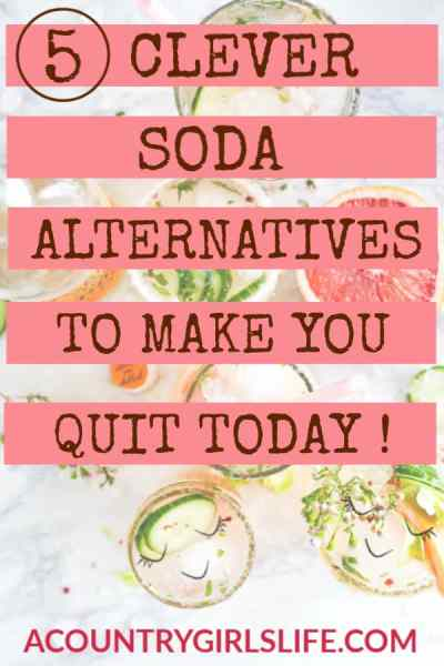 How I Quit Soda and Lost Weight with These All Natural, No-calorie Substitutes! (And You Can Too!)